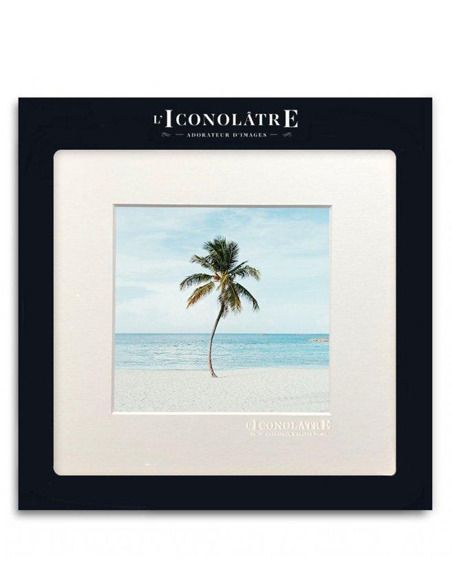 Photo d'un palmier devant l'océan, ondulant paisiblement comme dans une danse.